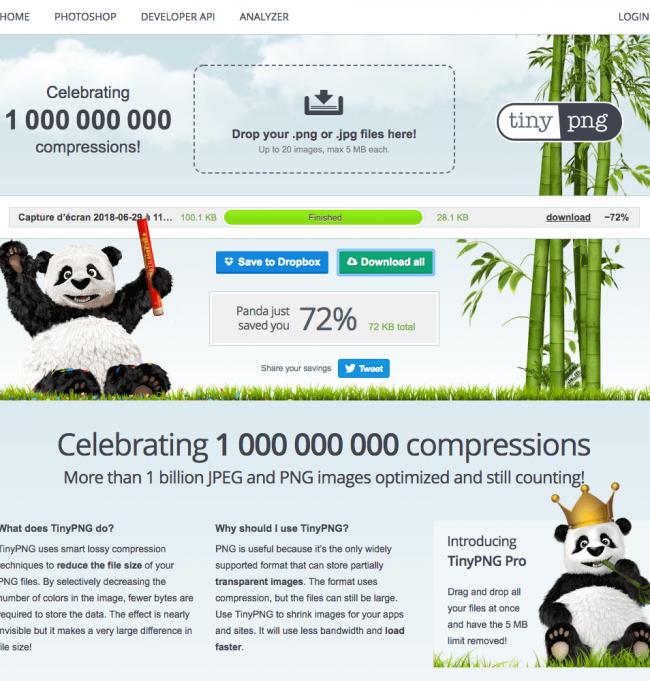 3 outils pour optimiser vos images en 3 minutes : tinypng